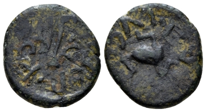 Sicily, Panormus Bronze I cent. - From the E.E. Clain-Stefanelli collection. (Starting Bid £ 35 *)