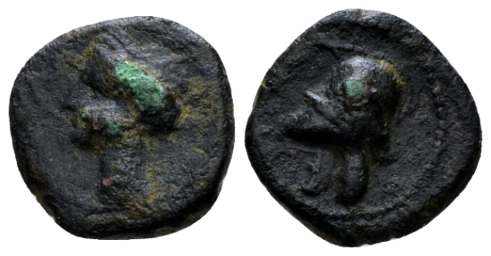 The Carthaginians in Sicily and North Africa, Carthago nova Bronze circa 211-208 - From the E.E. Clain-Stefanelli collection. (Starting Bid £ 25 *)